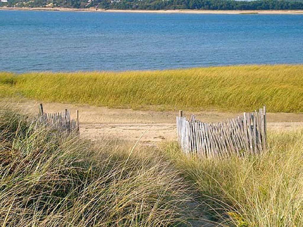 OCEAN FRONT 4 Bedroom on Lt. Island Wellfleet, great weeks available!