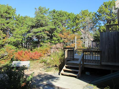 North Eastham Rentals   Cape Cod Oceanview Realty
