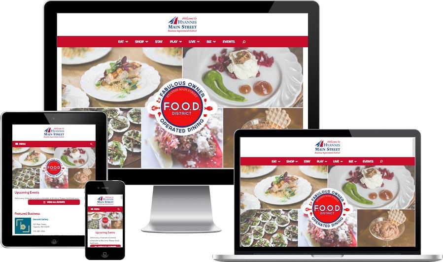 Hyannis web design